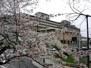ウェスティン京都1.jpg