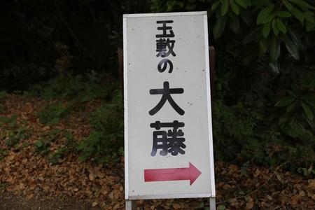 IMG_0982.JPG