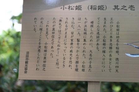 IMG_6611.JPG