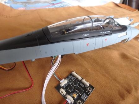 P7080006.JPG