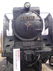 SN3D0445.JPG