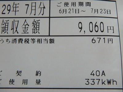 s-P8230095.jpg