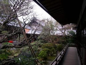 永観堂31.jpg