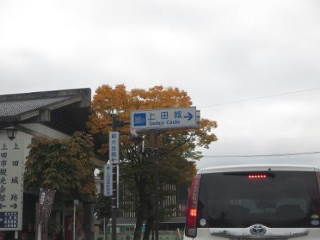IMG_5891.JPG