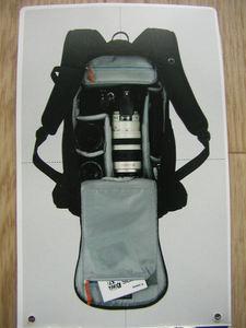 P1010164.JPG