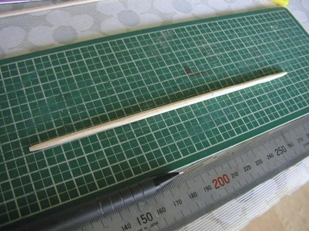 P1015286.JPG