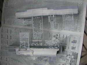 P1019691.JPG