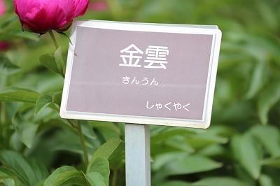 s-IMG_9898.jpg