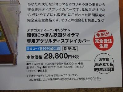 s-P7260016.jpg