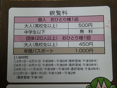 s-PB080003.jpg